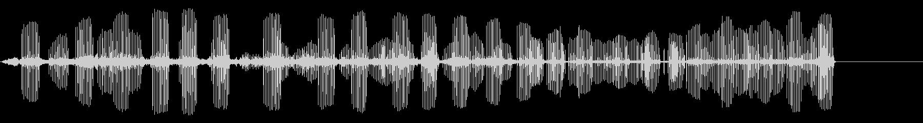 アフリカの鳥の未再生の波形