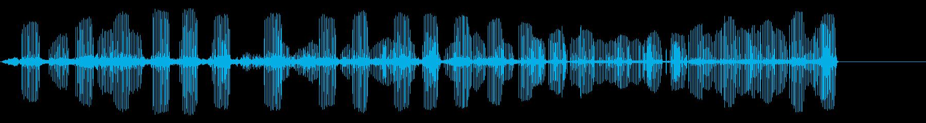 アフリカの鳥の再生済みの波形