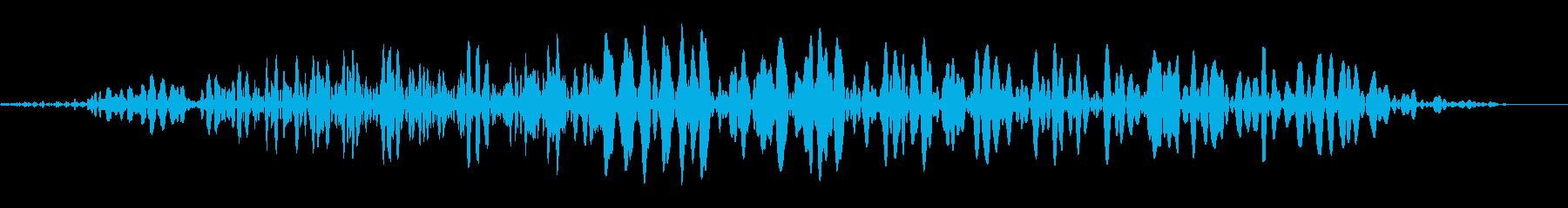 LC IMPフレーム14Cの再生済みの波形