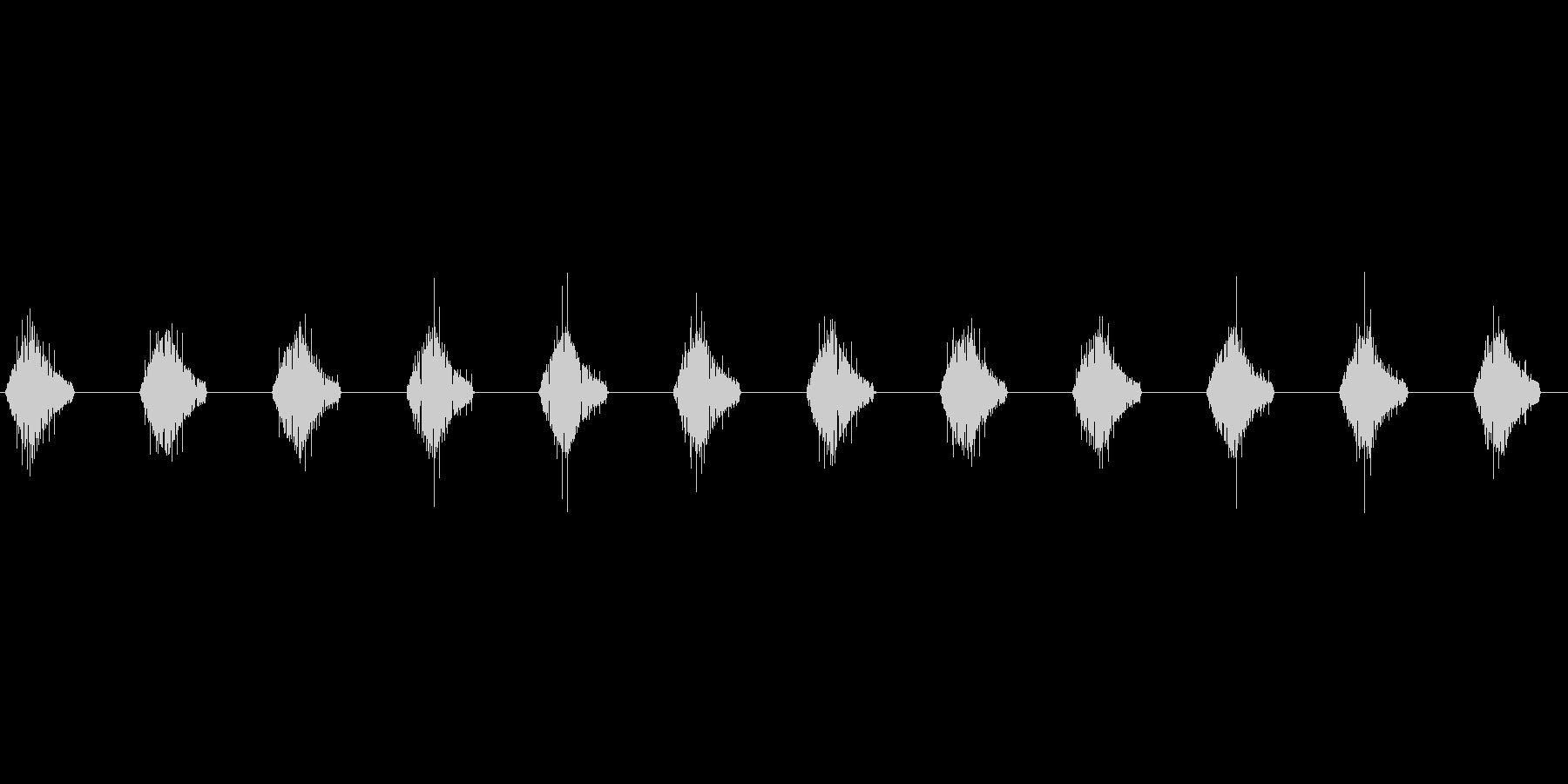 モニター文字表示 ピピピピ ループ_01の未再生の波形