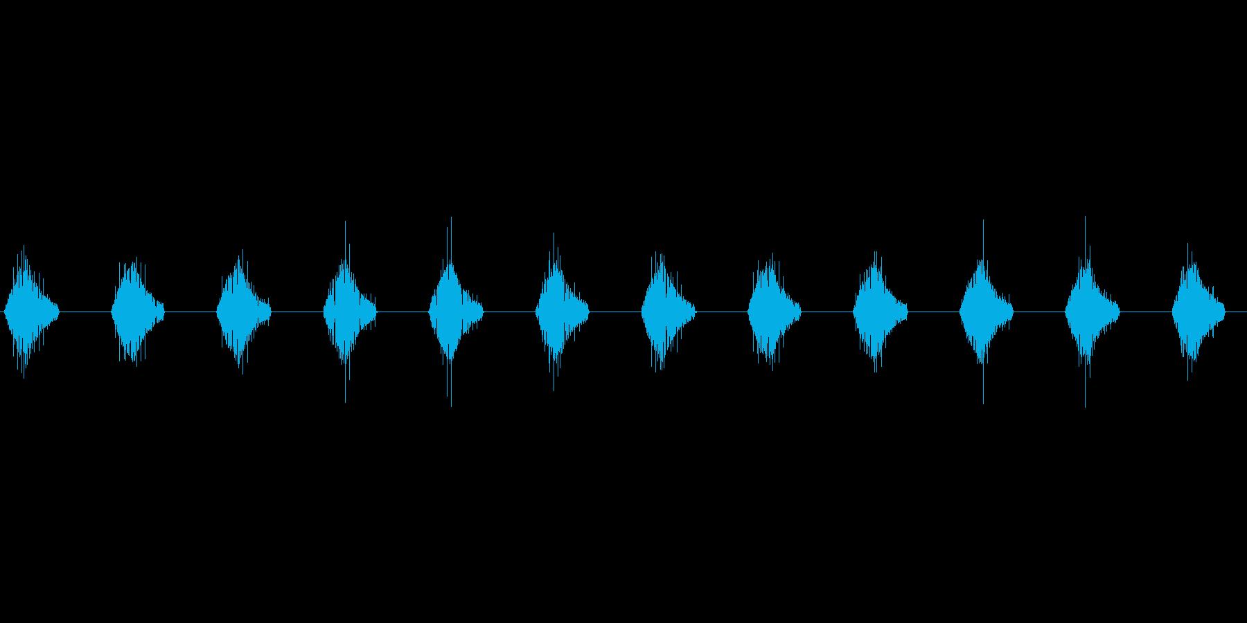 モニター文字表示 ピピピピ ループ_01の再生済みの波形