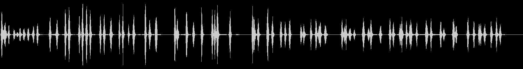 マラポー:2匹の犬、動物の犬の未再生の波形