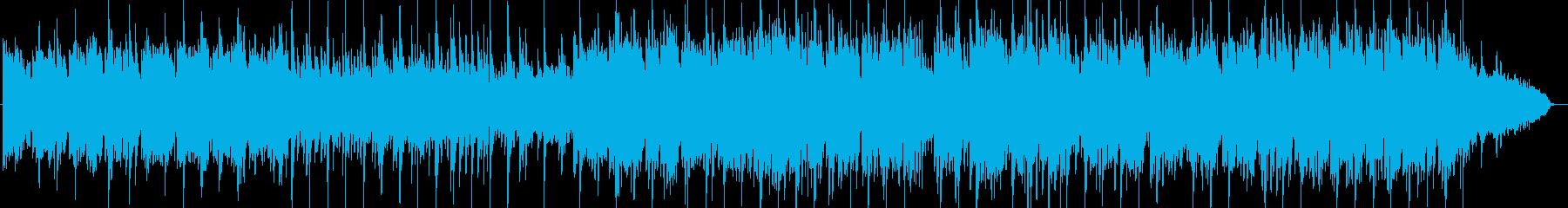 ゆったりした自然風景の音楽の再生済みの波形