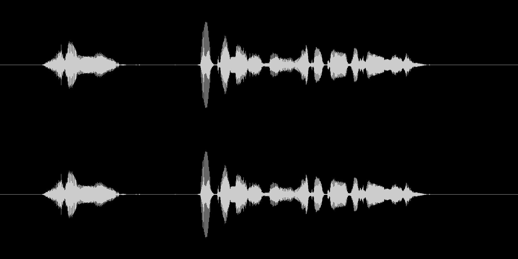 【行事・イベント・挨拶】新年、明けまし…の未再生の波形