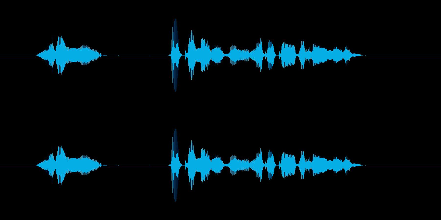 【行事・イベント・挨拶】新年、明けまし…の再生済みの波形