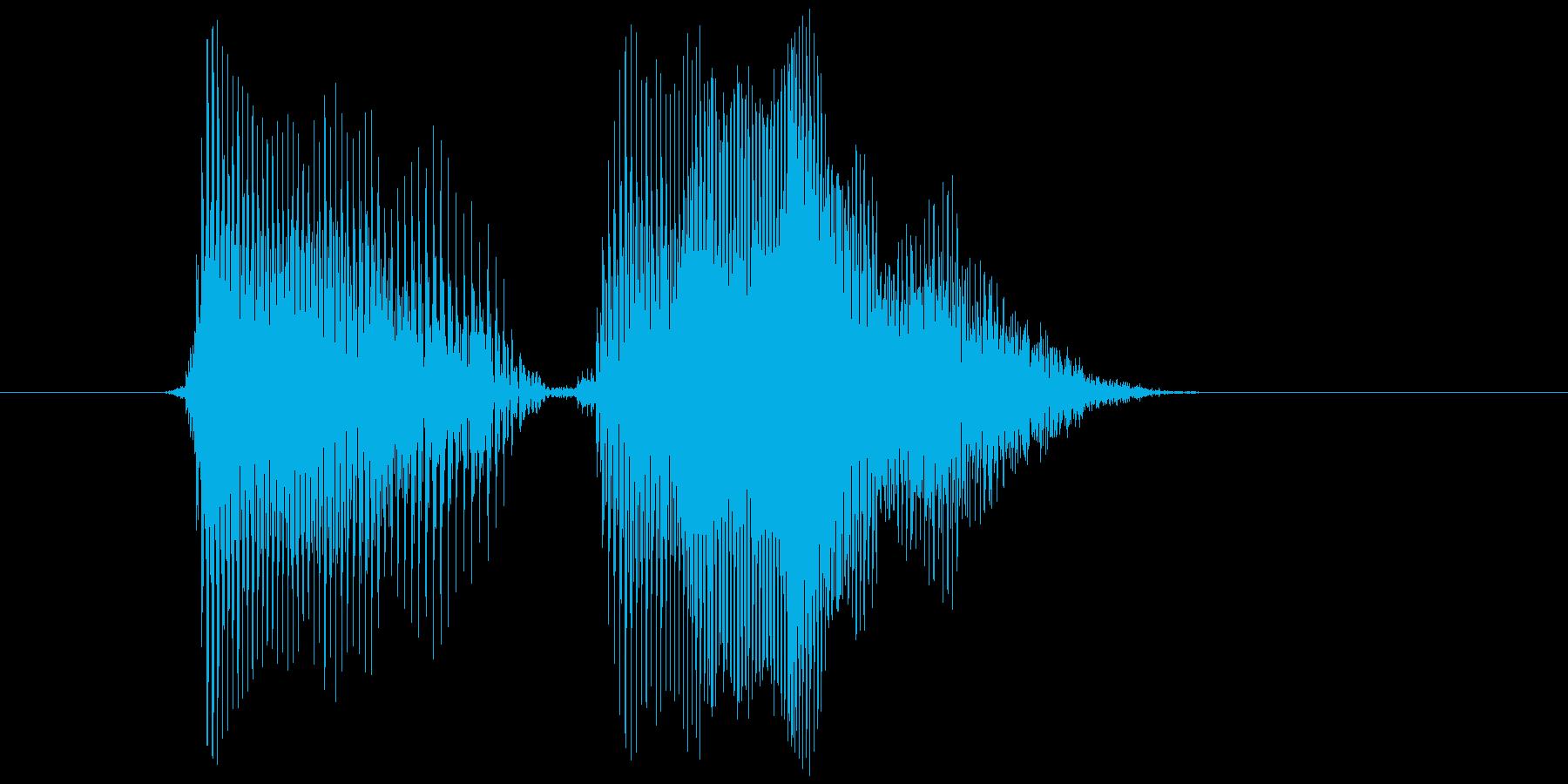 「ドヤドヤ」の再生済みの波形