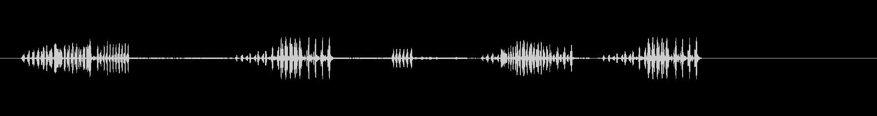 鳥、ミソサザイ;歌、近い視点。の未再生の波形