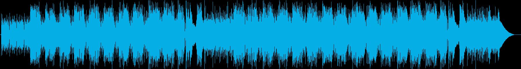 弾力性のあるブラッシュシャッフルグ...の再生済みの波形