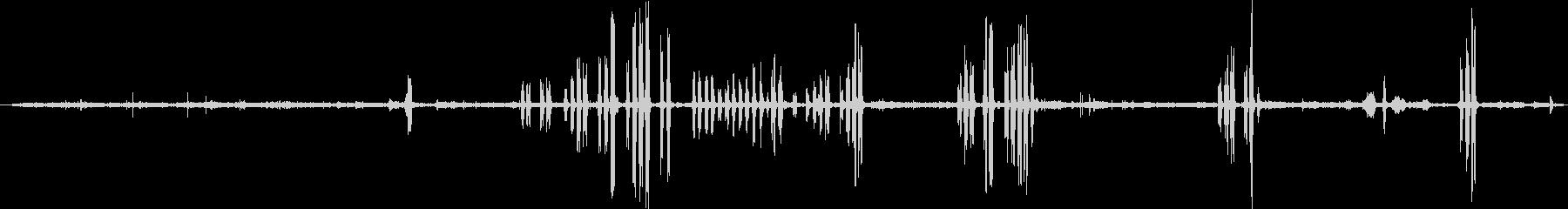 アシカ:囲い、スイミング、アザラシ...の未再生の波形