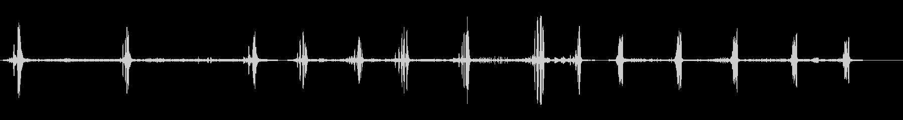 ゴールデンオリオールの未再生の波形