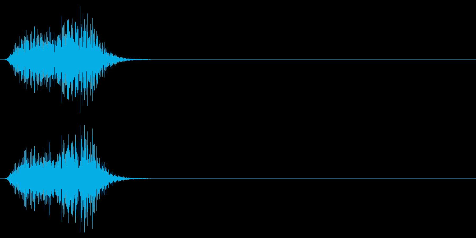 カケスの鳴き声(カラスの一種)の再生済みの波形