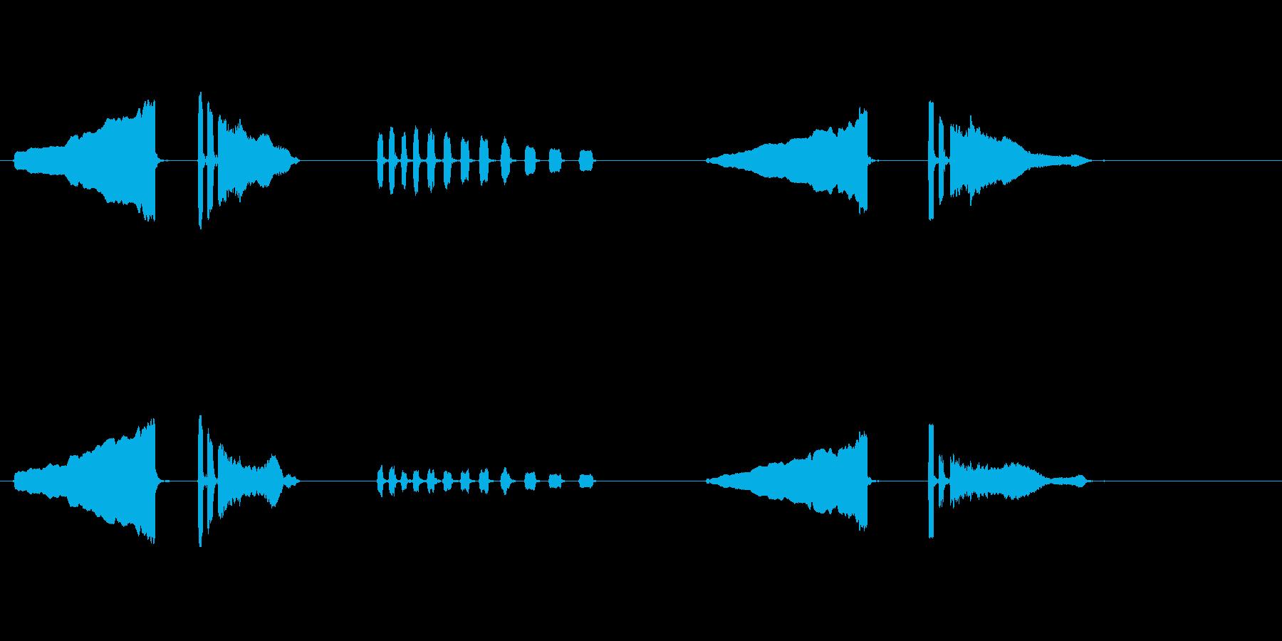 うぐいす笛2梅に鶯春鳴き声初音ホーホケキの再生済みの波形