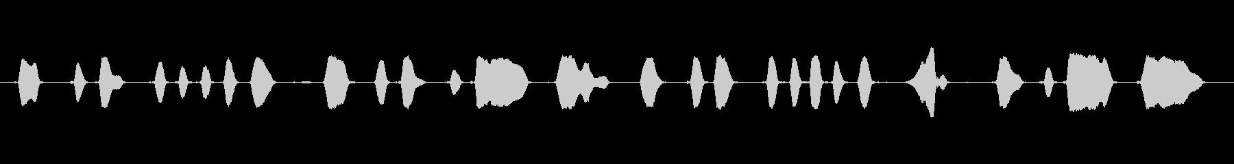 ミュージカルチューン:「ポップゴー...の未再生の波形