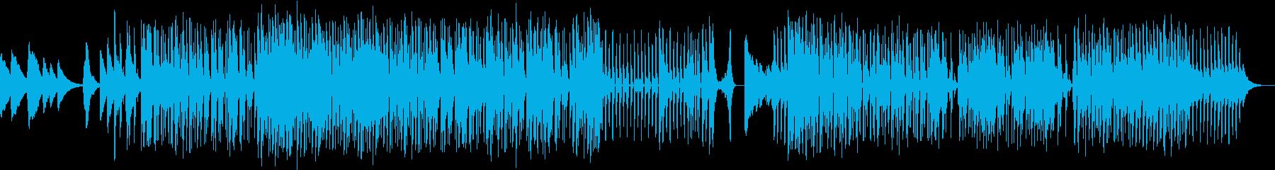 ゆったりハウスの再生済みの波形