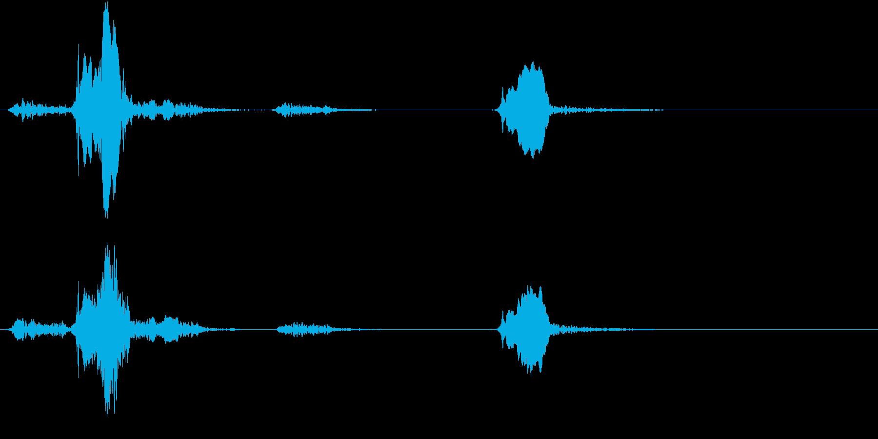 【生録音】早朝の小鳥のさえずりの再生済みの波形