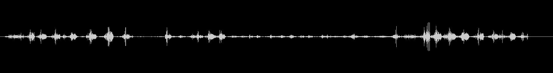 鳩小屋-森の中-飛ぶ鳥の未再生の波形