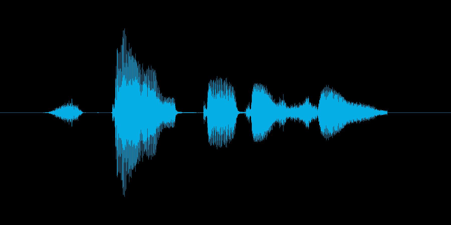 【おっとり】スタートです。の再生済みの波形