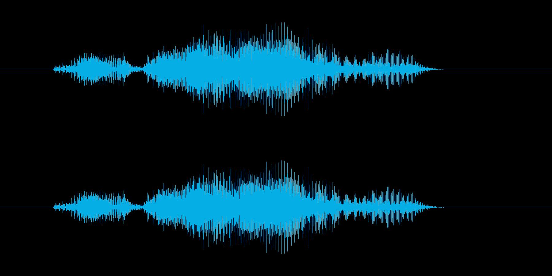 おりゃー の再生済みの波形