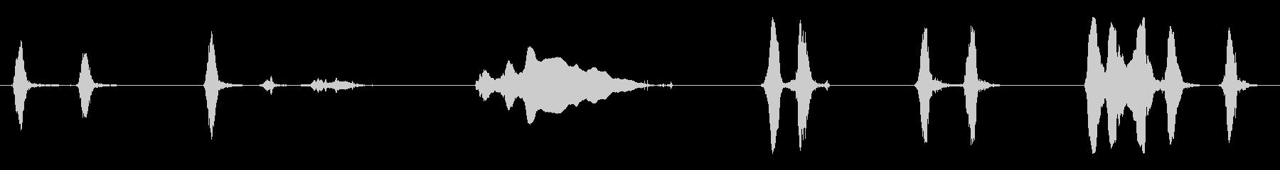 犬のkingえ声、短いハウルの未再生の波形