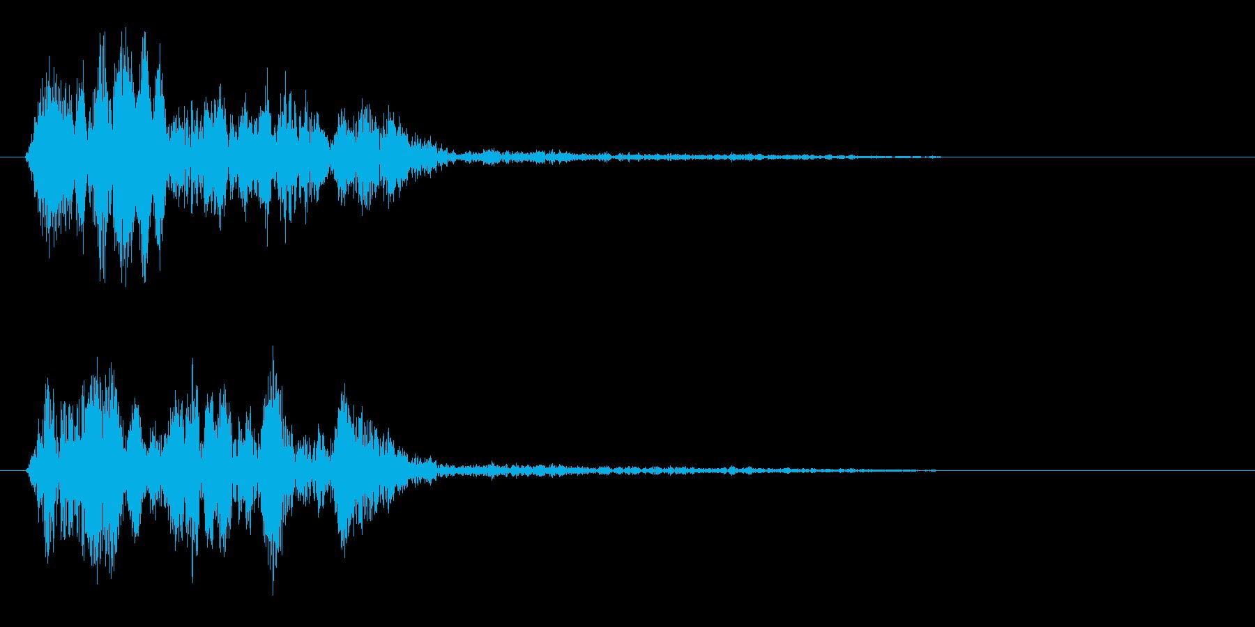 クワッ(一瞬の甲高い鳴き声音)の再生済みの波形