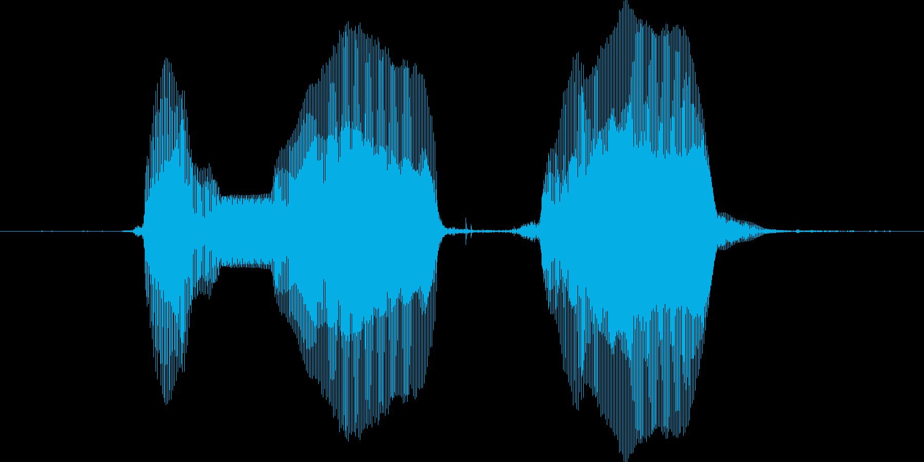 おねえちゃん♪の再生済みの波形