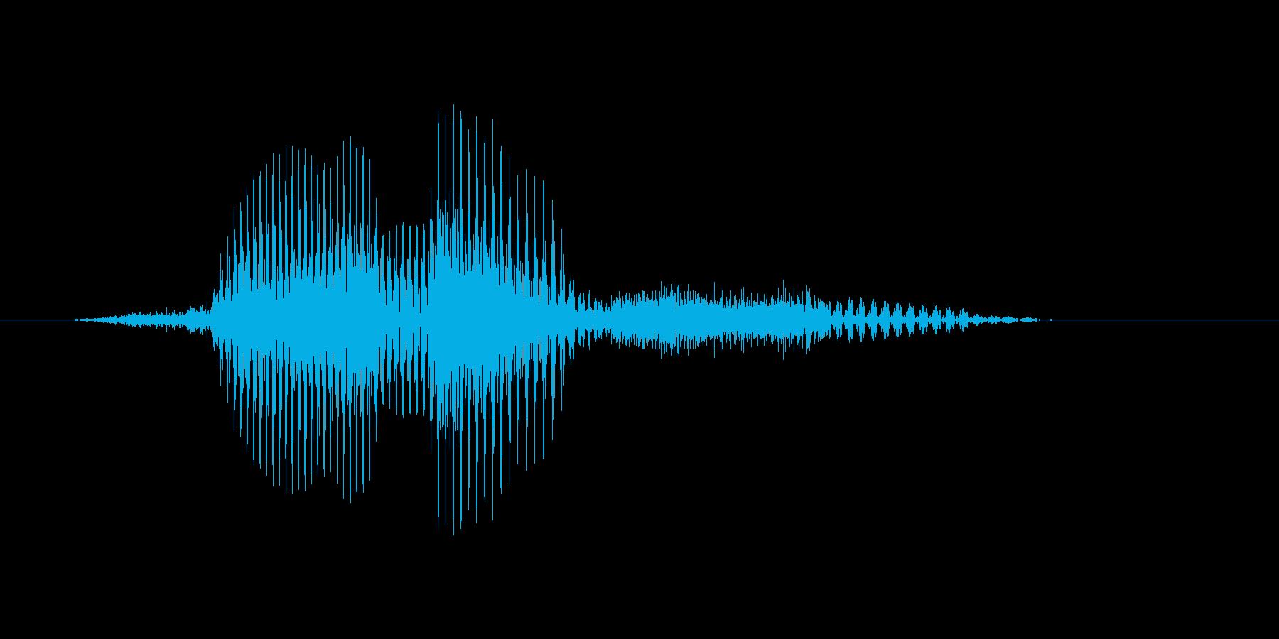 フィニッシュの再生済みの波形