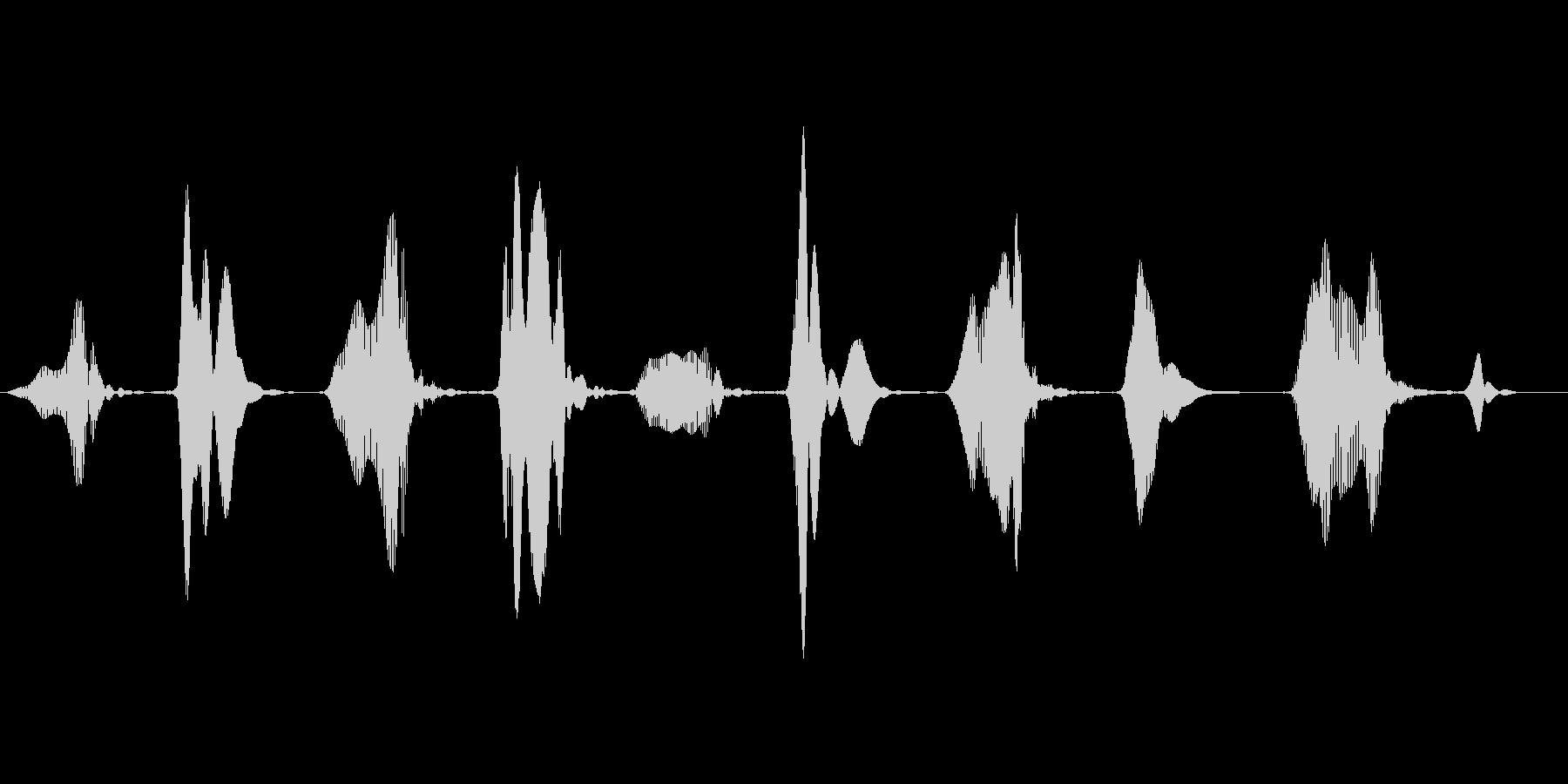 キュッキュッ(窓などをこする音)ループの未再生の波形