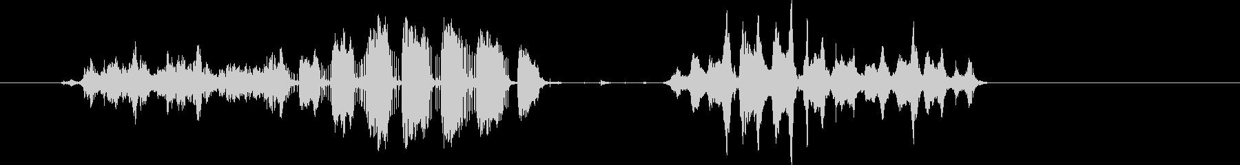コンゴウインコの発声。いくつかのコ...の未再生の波形