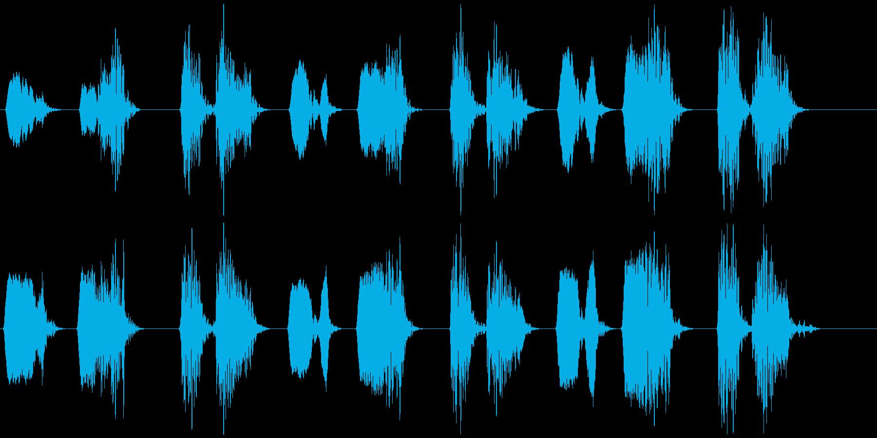 キジバト②  ホーホー ホッホーの再生済みの波形