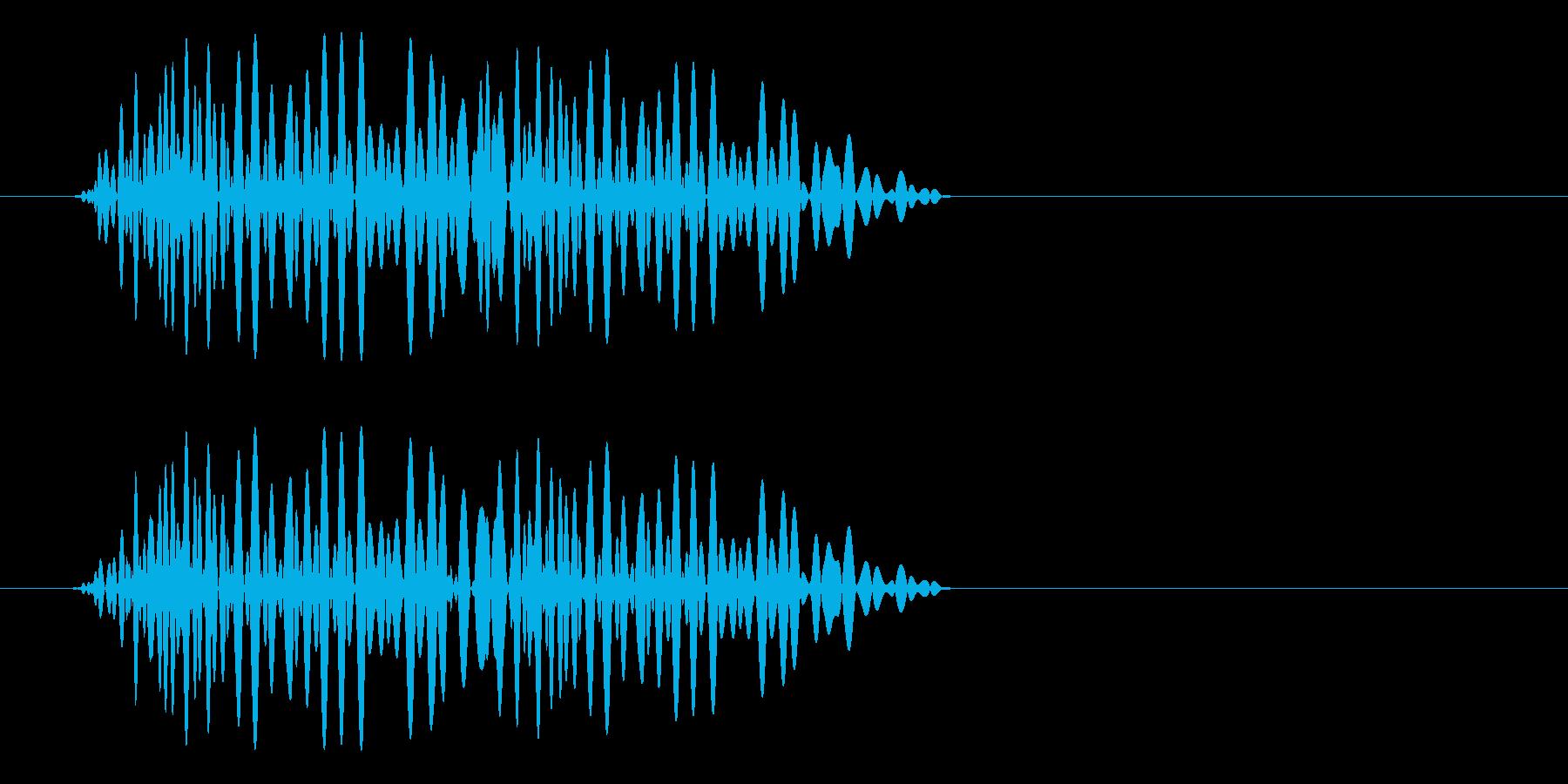ポヨン(短く振動する音)の再生済みの波形
