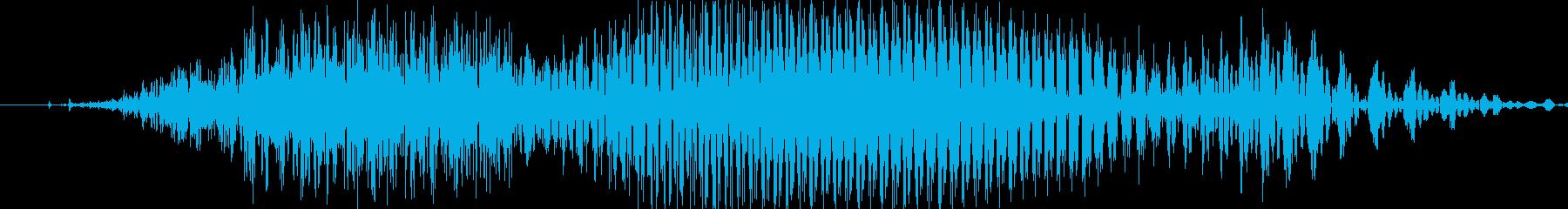 チーの再生済みの波形