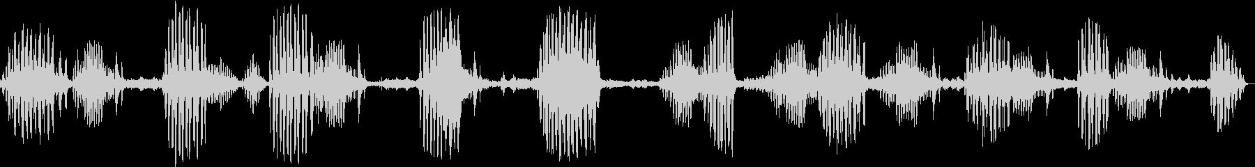 小鳥の鳴き声の未再生の波形