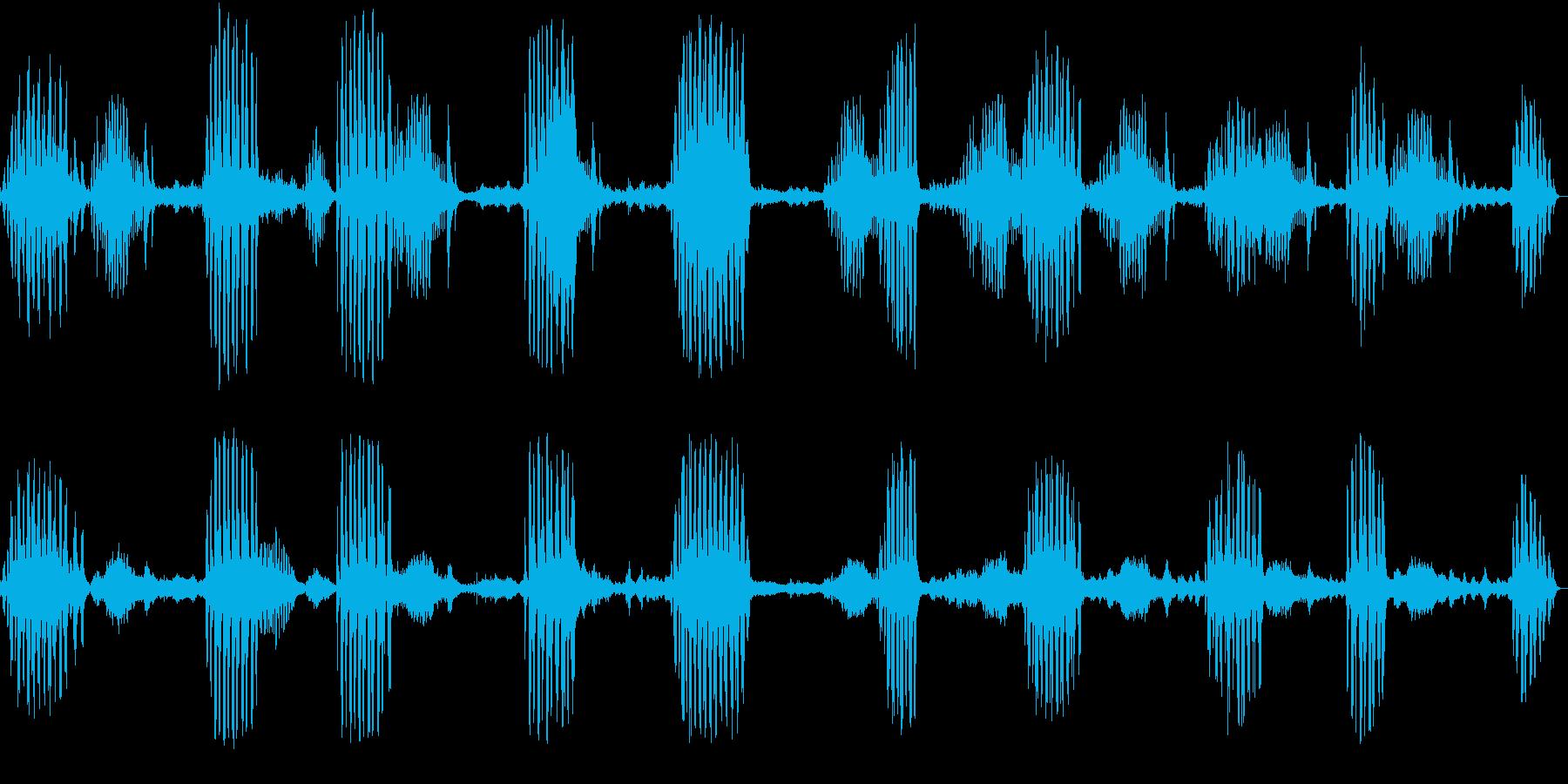 小鳥の鳴き声の再生済みの波形