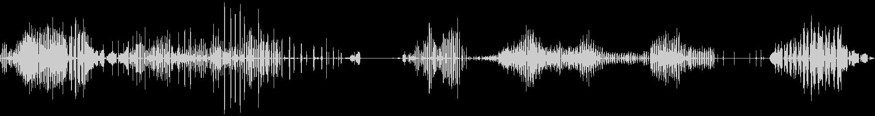 PLOVER / LAPWING ...の未再生の波形