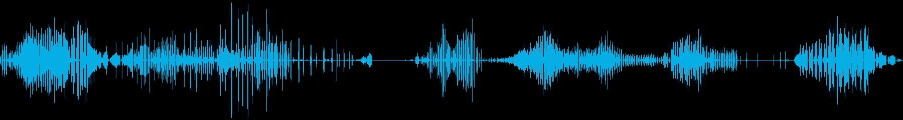PLOVER / LAPWING ...の再生済みの波形