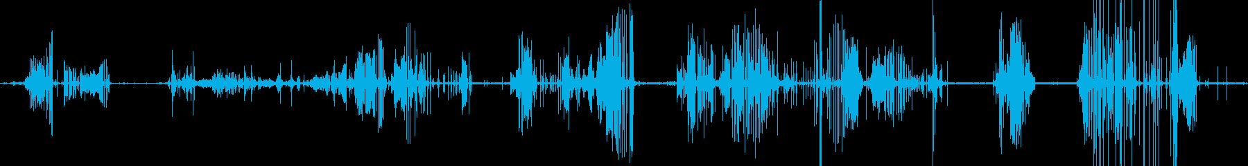 レザーシューキーキーズロングテイクの再生済みの波形