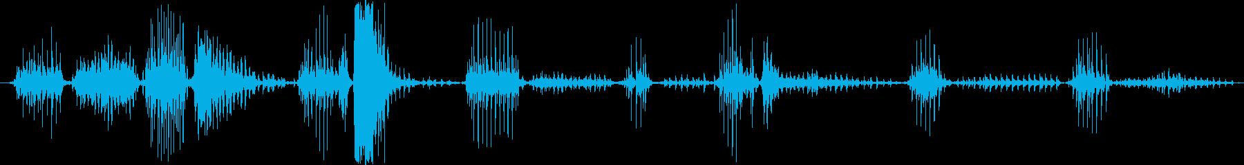黒いヒョウ:絶え間ない喉の鳴き声、...の再生済みの波形