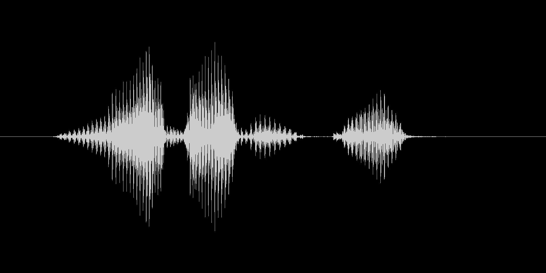 レベル5(ご)の未再生の波形