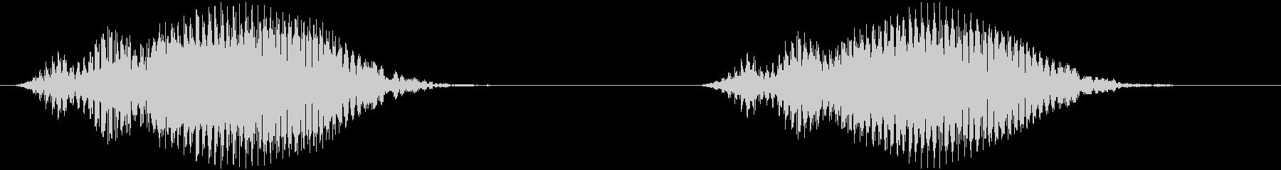 ウシガエルの鳴き声 ブブゥー×2の未再生の波形