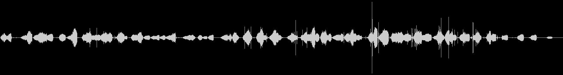 小グループ:鳴き声、動物、,歯類他...の未再生の波形