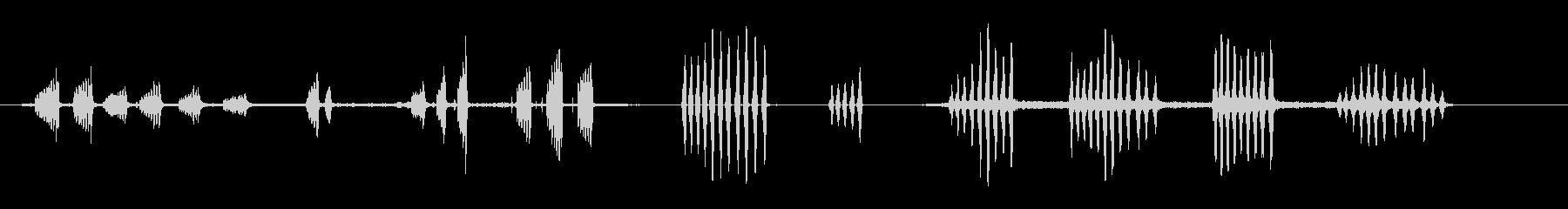 チョウゲンボウの未再生の波形