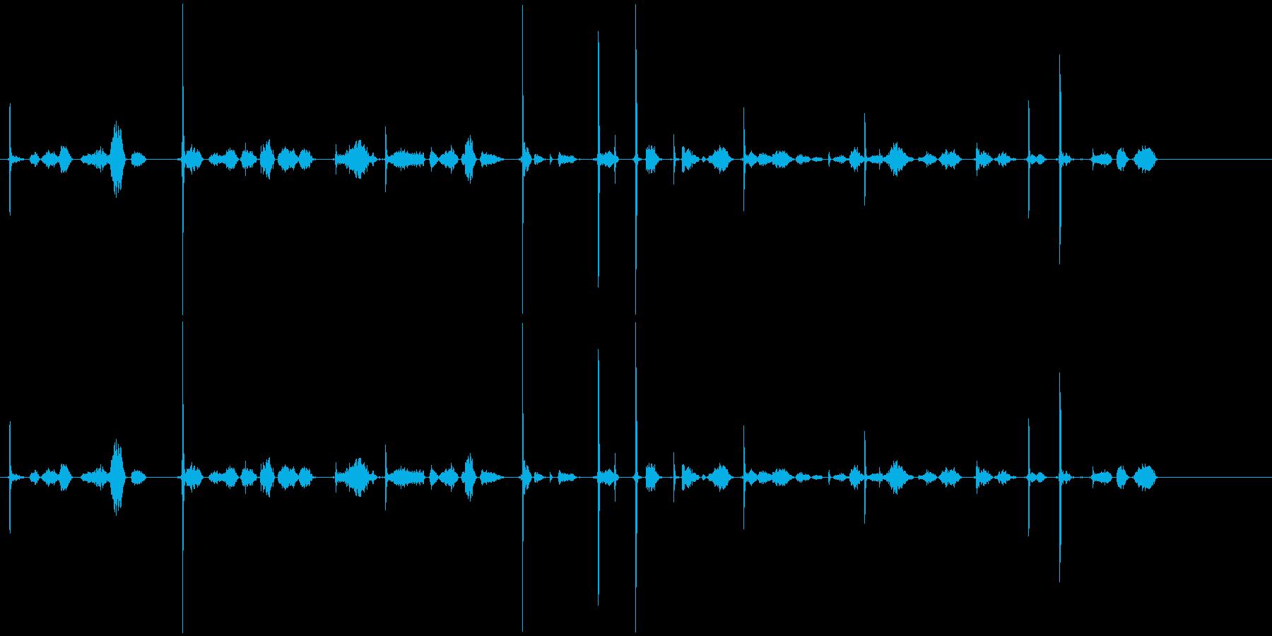 かりかり(鉛筆で文字を書く音)①の再生済みの波形