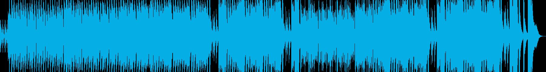 ハンガリー舞曲/テクノアレンジの再生済みの波形