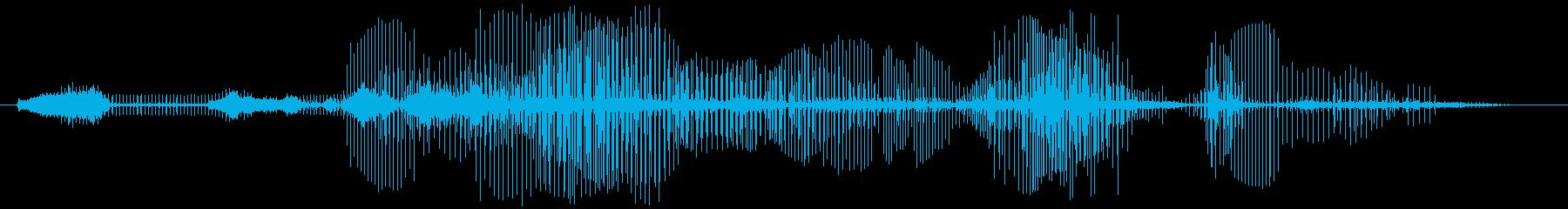 コウノトリ-シゴニャブランカの再生済みの波形