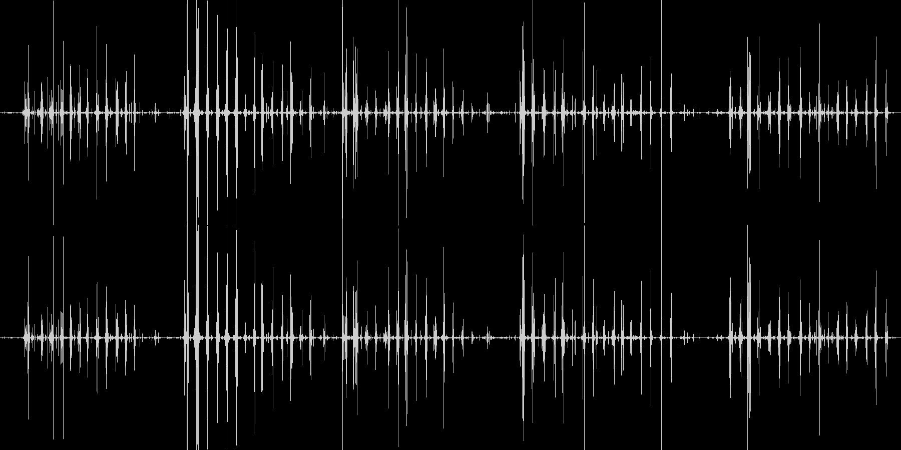 コリコリポリポリ サザエ咀嚼音の未再生の波形