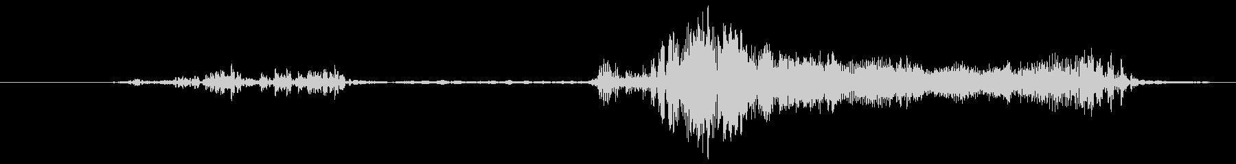 豚 バウル01の未再生の波形