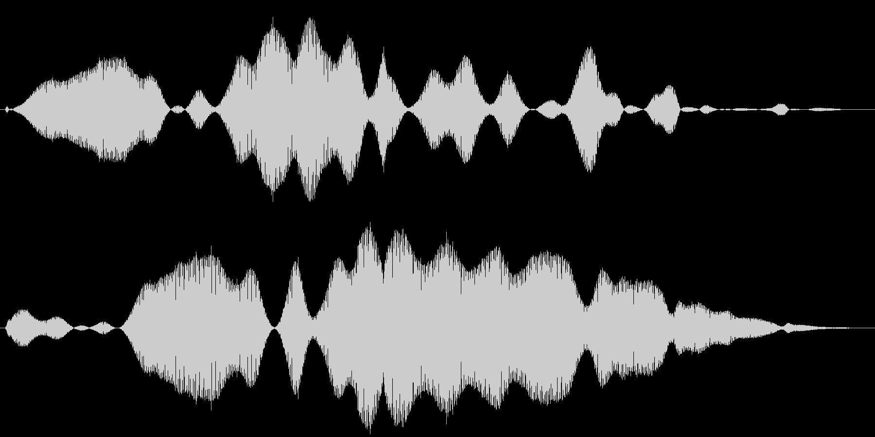 ブーン、とハエが飛ぶ音ですの未再生の波形