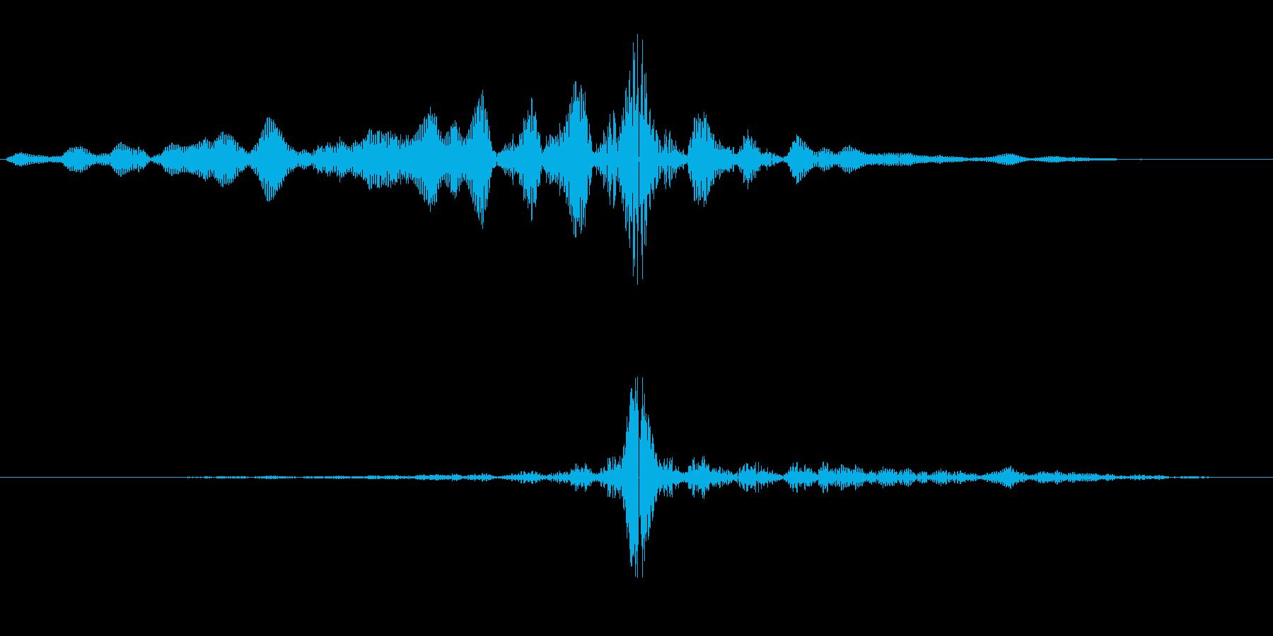ビュイッ(通過音)短めの再生済みの波形
