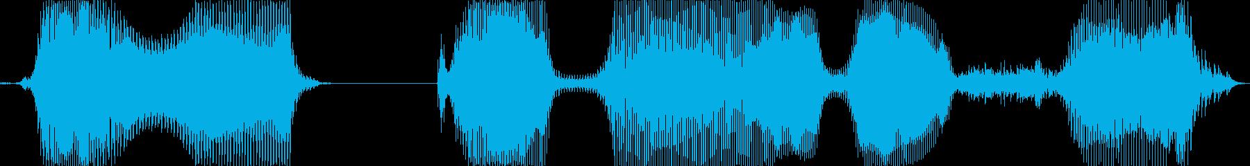 ビッグボーナス!の再生済みの波形