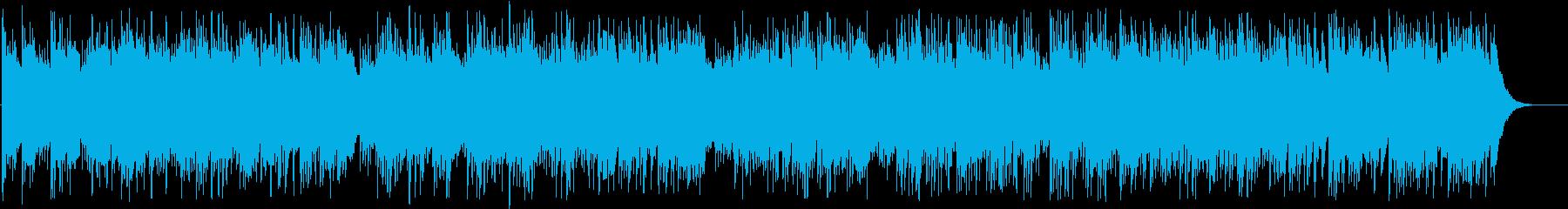 フォーク楽器。アコースティックスラ...の再生済みの波形